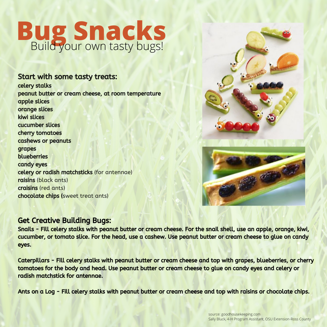 Bug Snacks